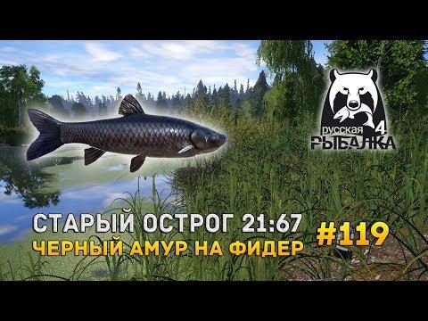Русская Рыбалка 4 #119 - Старый Острог 21:67. Черный амур на фидер