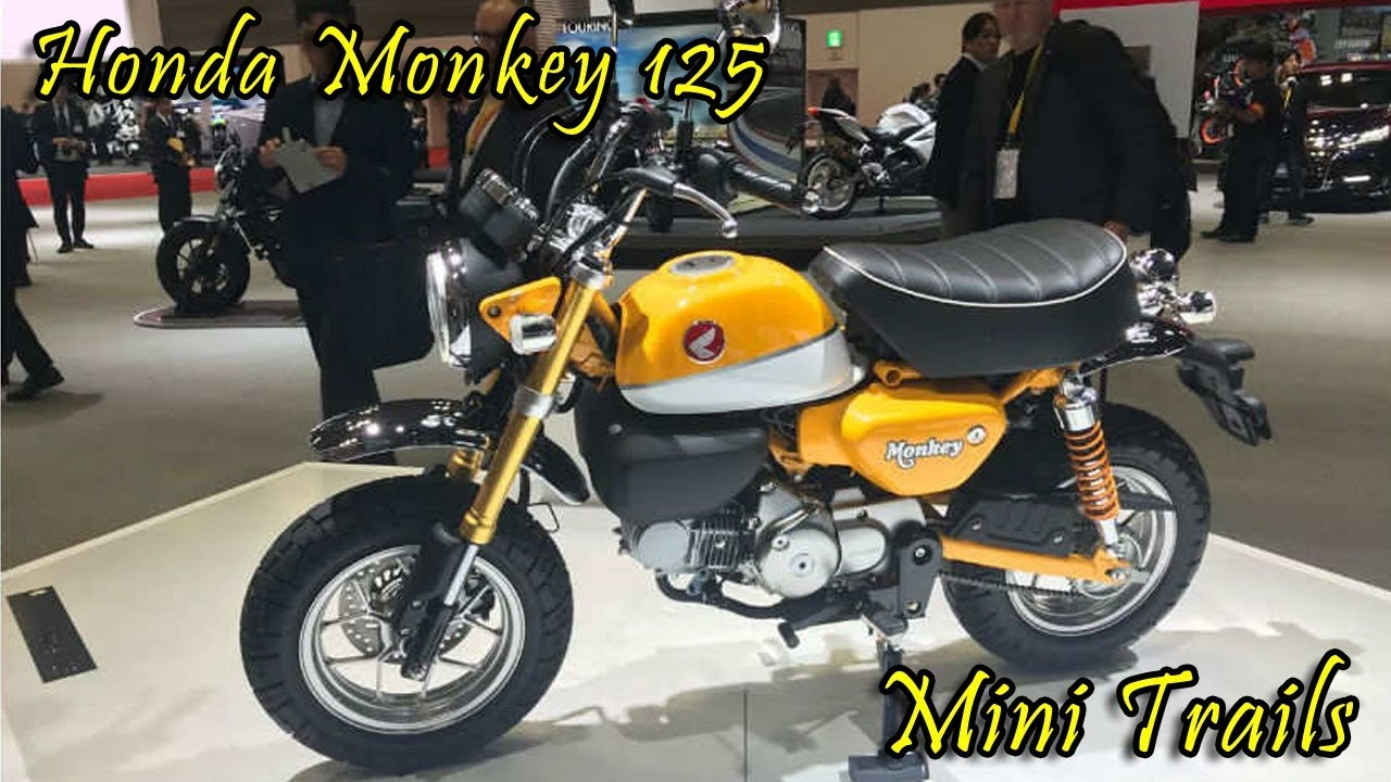 mini trails honda monkey 125 youtube. Black Bedroom Furniture Sets. Home Design Ideas