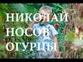 Аудиосказка огурцы Николай Носов mp3