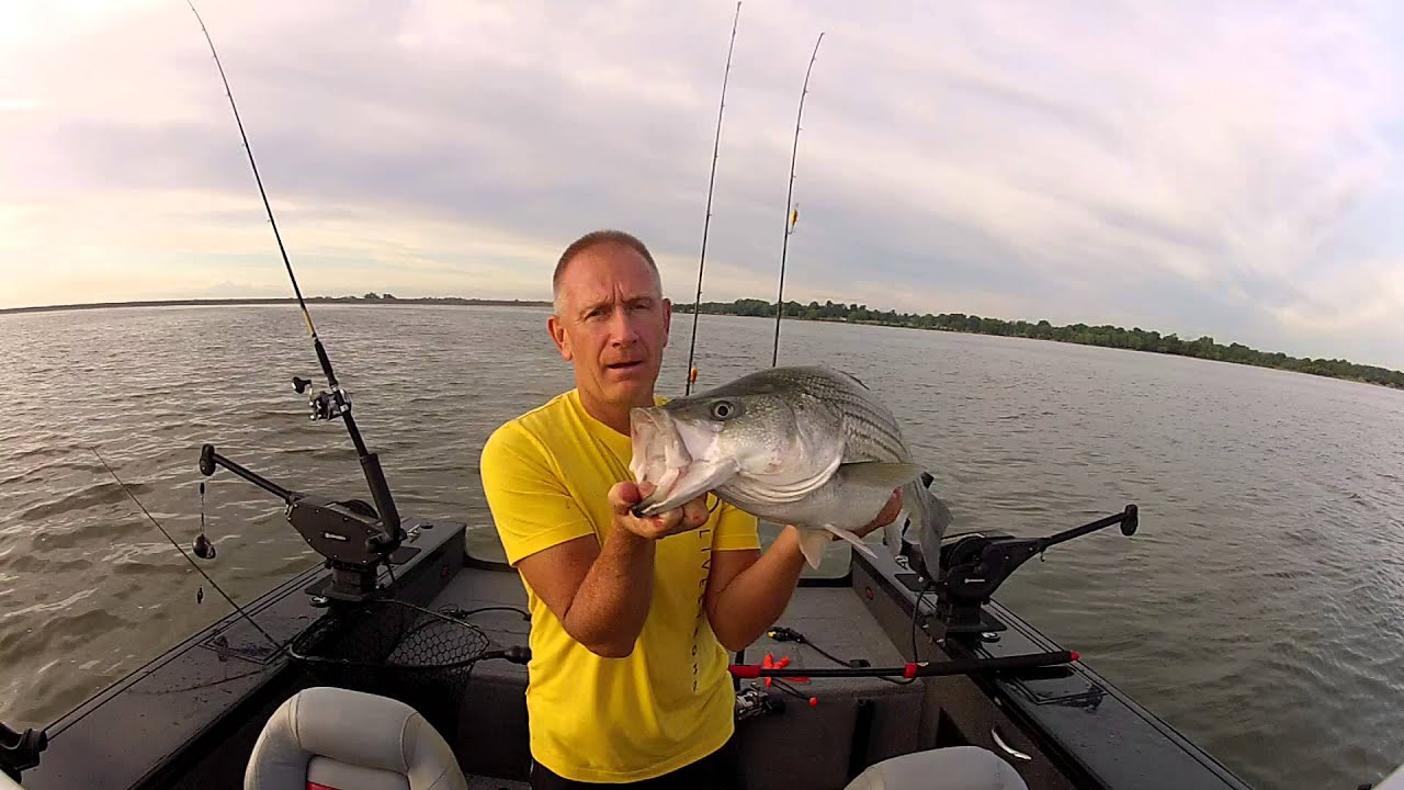 Cheney lake striper 2015 youtube for Cheney lake fishing report