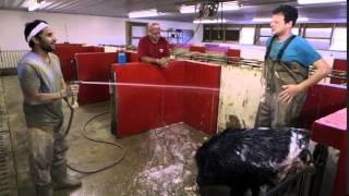 TUSK Gets A Wash