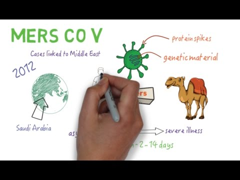MERS CoV - An overview (Updated)