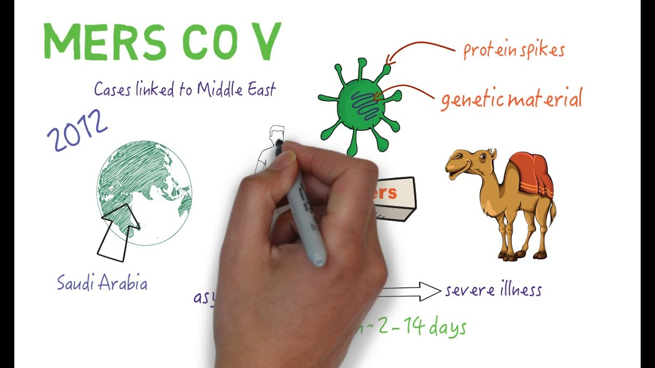 Coronavirus, transmission symptomatique possible