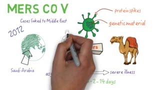 MERS CoV - An overview