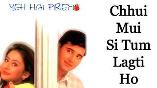 Chui Mui Si Tum Lagti Ho - Milind Ingle - Yeh Hai Prem [Remastered]