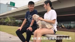 牽越ECHO-2016-2017可立中學學生會---Annu