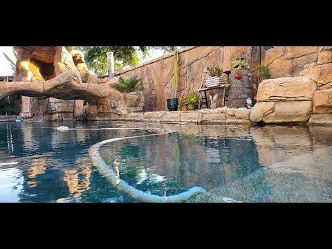 Pool Cleaning - Swap Meet Shops