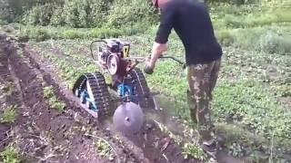 Окучивание картофеля. Мотоблок Каскад с гусеничным приводом.(Мотоблок