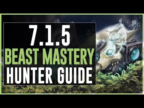 Beast Mastery Hunter PvE Guide :: Legion Patch 7.1.5