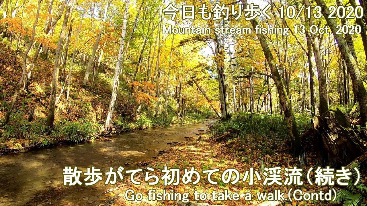 今日も釣り歩く(10/13 2020)  散歩がてら初めての小渓流(続き)(Mountain stream fishing 13 Oct. 2020)