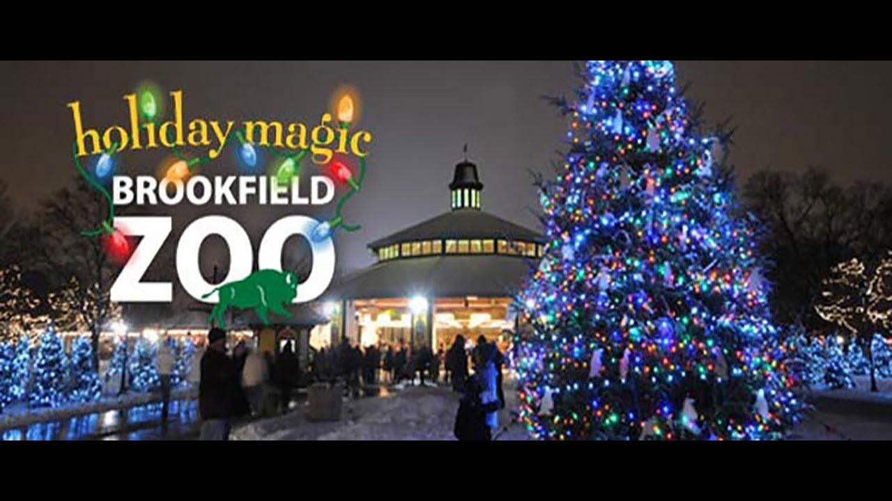 Zoo Lights Brookfield Zoo