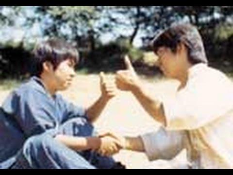 """カンフーアクション映画「虎鶴双形拳」""""Tiger & Crane Fist"""" Remix-HD ver."""