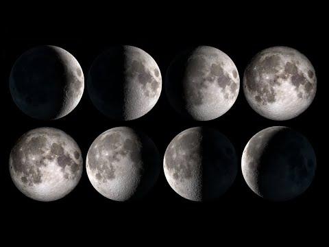 Фаза луны мультфильм смотреть онлайн