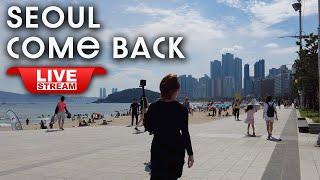 Live Seoul korea Real time- Le…