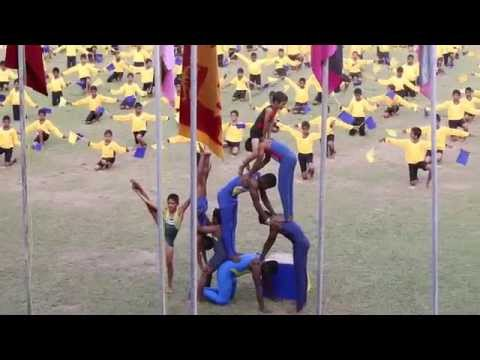 ROYAL COLLEGE COLOMBO 07   2014 SPORTS MEET GYMNASTICS DISPLAY