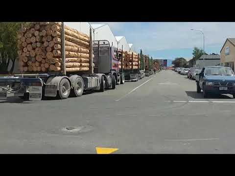 Port Nelson Regular Logging Trucks Jam Danger! Nelson Nz Council Port Nelson FYI