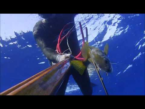 Samos spearfishing deep and shalow