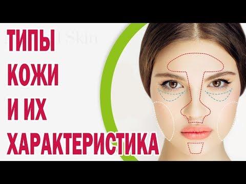 Типы кожи и их характеристика