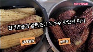 [찰옥수수 맛있게찌는방법] 옥수수 전기밥솥과 압력솥에 …