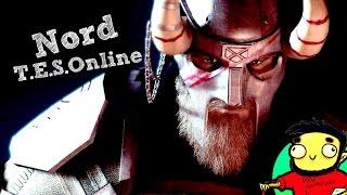 Броня норда из трейлера TES Online