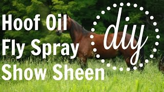 DIY Hoof Oil, Fly Spray, and Show Sheen   EquineCass