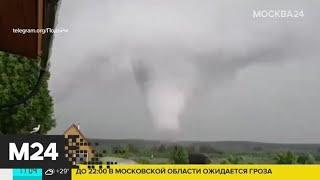 Жители Вологодской области стали свидетелями смерча - Москва 24