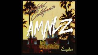 The Eagles - Hotel California (AMNLZ REMIX)