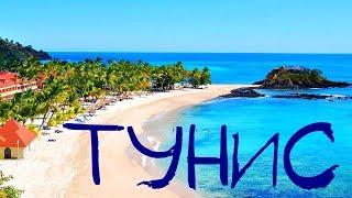 Едем отдыхать в Тунис. Рай на Земле. Природа, отели, питание, шопинг, развлечения