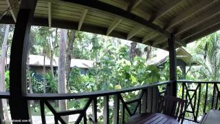 treetop one bedroom suite review tour at sunset at the palms all inclusive resort