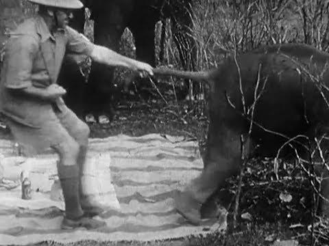 Indian Elephants in the Service of Man (1938) - amateur film by Jim Corbett