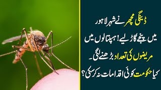 Serious Dengue Fever Outbreak In Lahore - Can Govt Defeat Dengues This Time? | Top Story