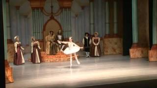 Naples Ballet presents