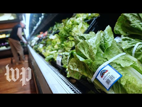 What's going on with romaine?
