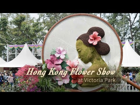 Live: Hong Kong Flower Show at Victoria Park维园花卉春意浓 姹紫嫣红正当时