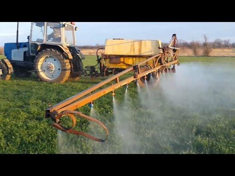Блог студента Курсовая работа озимая пшеница