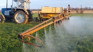 видео Внесение удобрений под озимую пшеницу