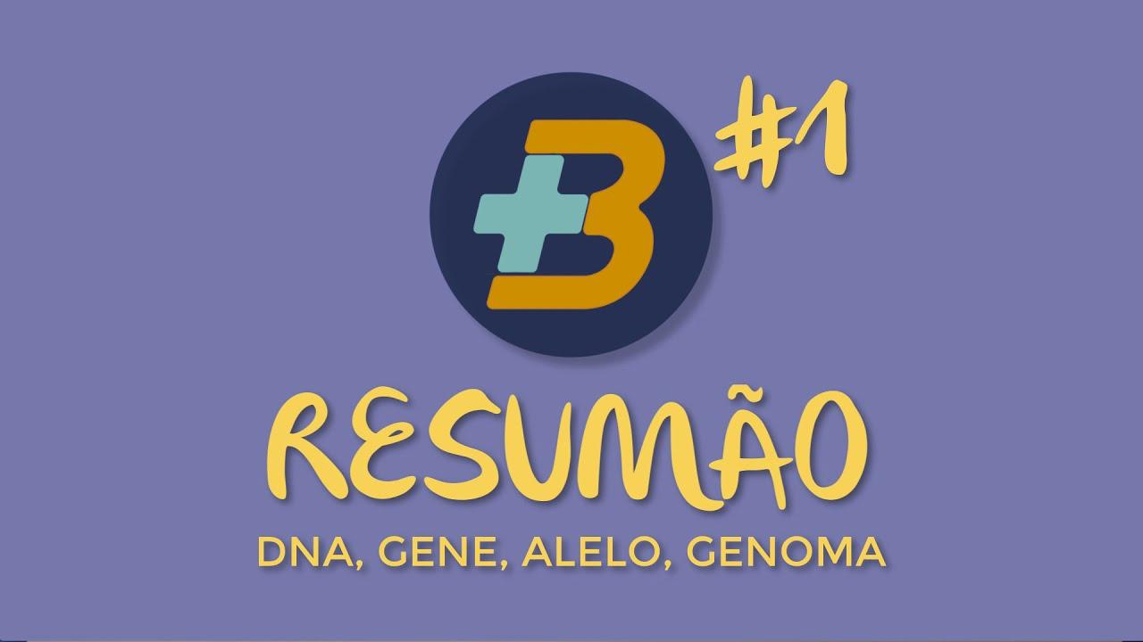 Genética - Gene, alelo, genoma - Mais Biologia dicas/ Resumão