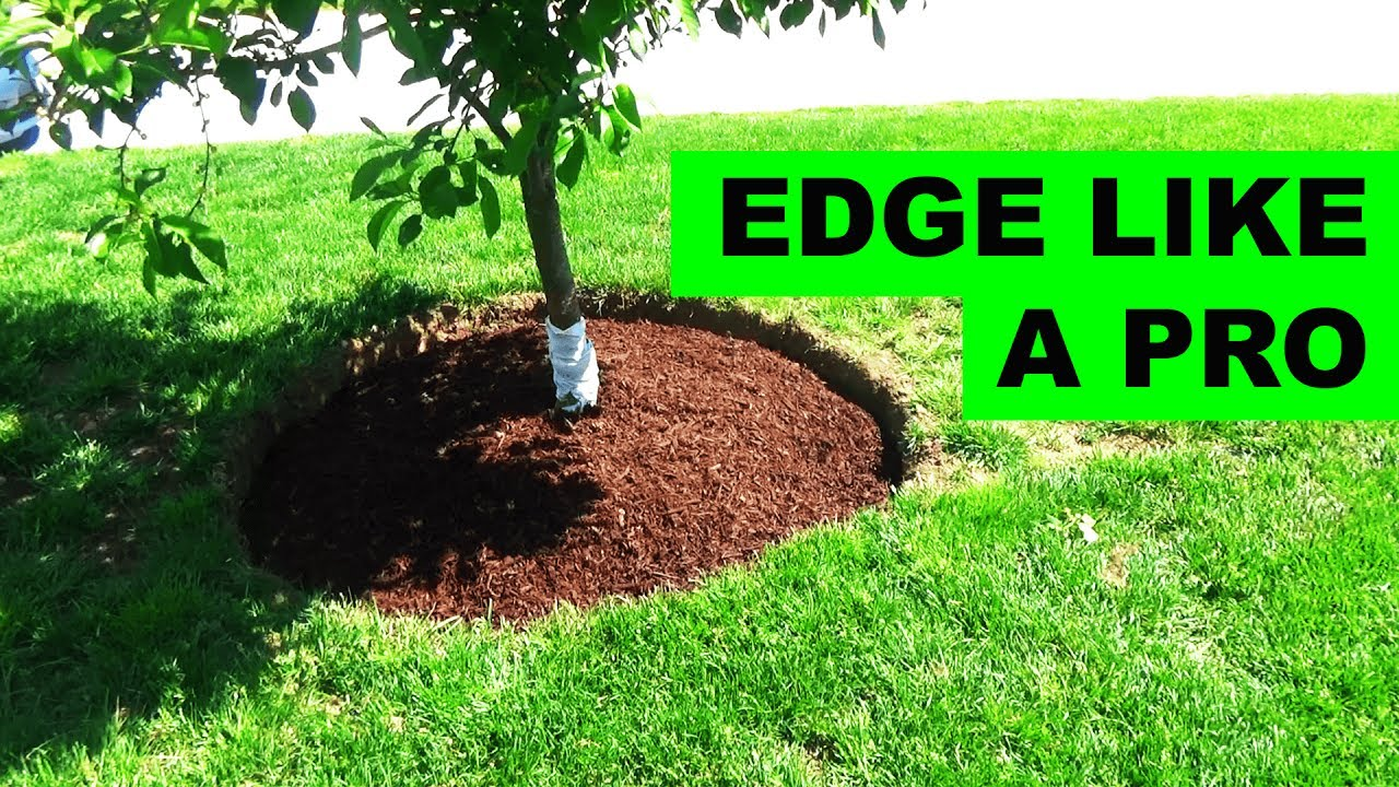 How To Edge And Mulch Around A Tree Youtube