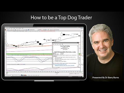 Renko chase trading system free download