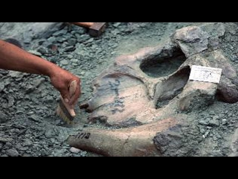 The Ancient Rocks of Earth Prove History is Wrong [FULL VIDEO]