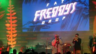 Fat Freddy's Drop SLINGS AND ARROWS live at HAY FESTIVAL 29/05/17