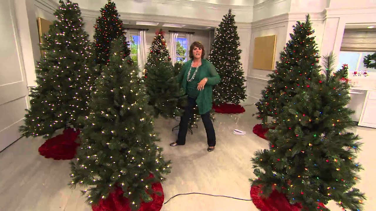 bethlehem lights 5 trevor pine christmas tree winstant power with jill bauer youtube