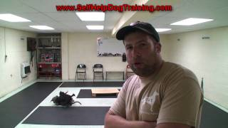 How to Train a Dog to Come When Called - Tips by K9-1 Dog Training.