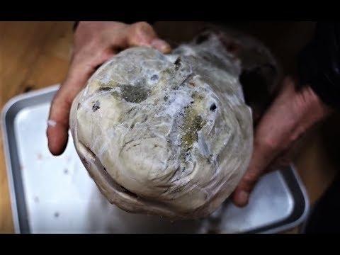 포항 모리국수에 들어가는 이 생선의 정체는? Korean food / A special fish in Mori noodles? [맛있겠다 Yummy]