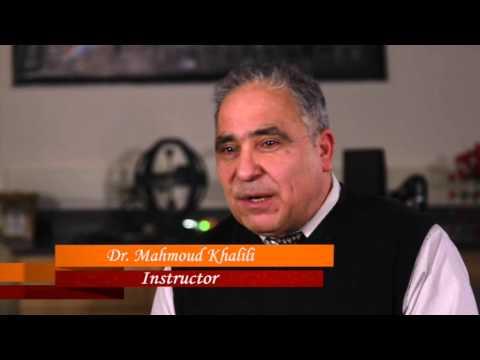 Success Stories season 2  Mahmoud Khalili