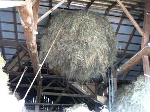 Loose Hay Into The Barn Youtube