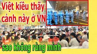 Việt kiều th,ấ,y c.ả.nh n,à,y ở VN sao khônq r,ù,ng m.ì.nh