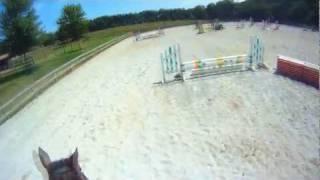 [Bay Blew Me Away...] - Blue Goose Combined Test - Beginner Novice Horse 7/12/11