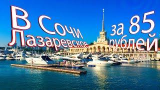 В Сочи Лазаревское Роза Хутор за 85 рублей
