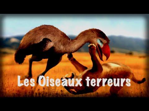 Les oiseaux terreurs ( les Phorusrhacidae )